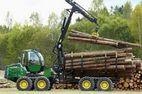 Сумское лесное хозяйство закупит услуги по лесозаготовке