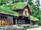 Травяные крыши